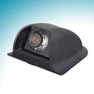 Car Rear View Camera (CS-402)
