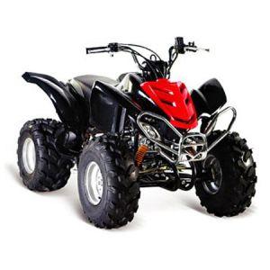 250cc ATV / Quad Bike(HL-A419A)