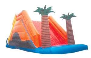 Inflatable Slide Toy