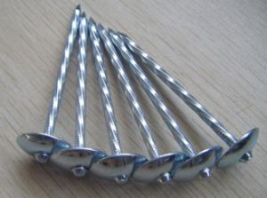 Galvanised Umbrella Head Roofing Nail