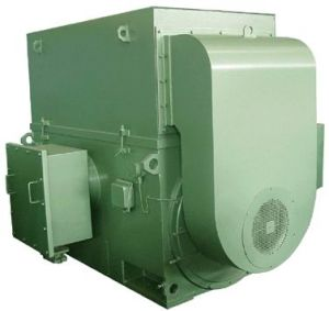 YAKK Three Phase High-Voltage Increased-Safety Flame-Proof Induction Motor