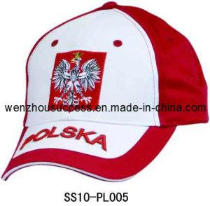 Baseball Cap (SS10-PL005) pictures & photos