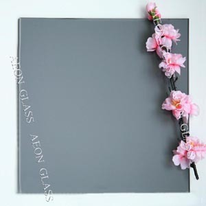 CE Certificate 4mm, 5mm, 5.5mm, 6mm, 8mm, 10mm Mist Gray Tinted Float Glass pictures & photos