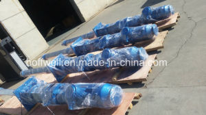 CE Approved G85-2 Vertical Single Screw Pump pictures & photos