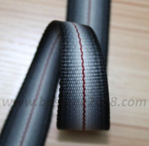 Variable Webbing#1401-120 pictures & photos