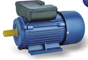 Series Single-Phase Dual Capacitor Induction Motor (YL) pictures & photos