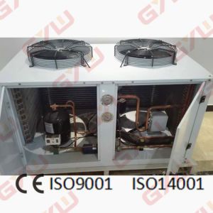 Gyw Condensing Unit for Blast Freezer/Cold Room pictures & photos