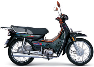 Motorcycle HL100-7