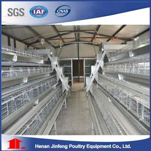 Jaulas Pollos Broiler Chicken Cage (9BLDT-A3060-25) pictures & photos