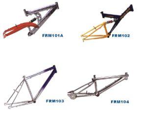 Frame & Fork