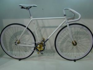 Cr-Mo Steel/Cro-Mo Steel Bicycle/Bike