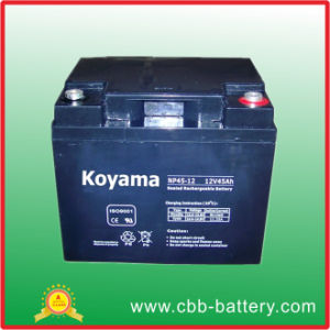The Most Reliable Supplier of VRLA Battery/AGM Battery/UPS Battery pictures & photos