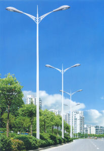 Road Light (SOD-0031)
