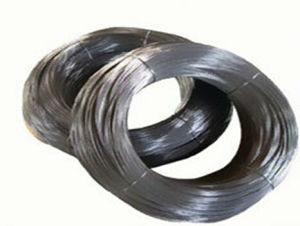 Popular Hot Sale Tantalum Wire Dia>1.0mm pictures & photos
