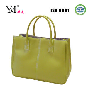 2014 High Quality Beauty Stylish Totebag pictures & photos