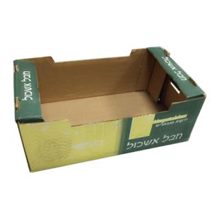 5-15kg Hard Duty Fruit Paper Packing Box pictures & photos