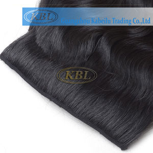 Brazilian Hair Weaving Clip-in Hair pictures & photos