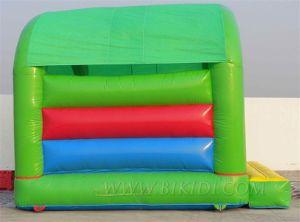 Bouncy Castle Inflatables (B1109) pictures & photos