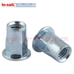 Flat Head Semi-Hex Body Rivet Nuts M10 Nuts pictures & photos