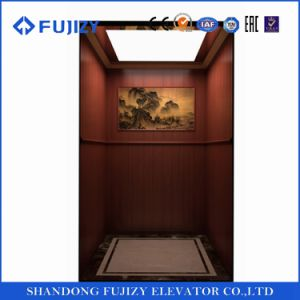 FUJI Zy Observation Passenger Elevator for Home Lift pictures & photos
