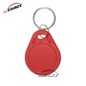 Customized 125kHz RFID Key Tags with 2 Metal Round Rings Keyfob pictures & photos
