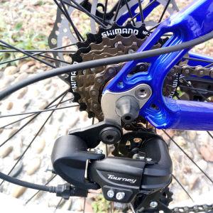 Trendy Design 36V 10.4ah Samsung Battery Mountain E-Bike pictures & photos
