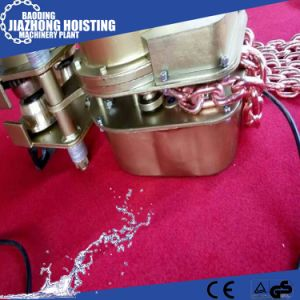 Heat Proof Chain Hoist 2t 10t with High Quality pictures & photos