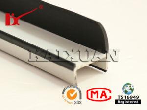 PVC Composite Extrusion Refrigerator Truck Door Seal Strip pictures & photos