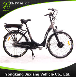Good Quality and Fashion Electric Bike Tdf58z pictures & photos