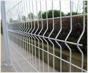 Curved Welded Wire Mesh Panel pictures & photos