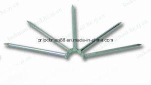 Competitive Bright Wire Common Nail (SW-044) pictures & photos