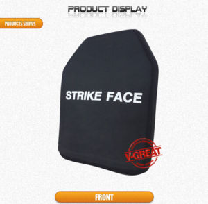 Multi-Curve Ballistic Plate pictures & photos