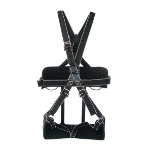 Good Strength Full Body Safety Seat Harness for Sale pictures & photos