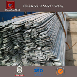 Hot Rolled Structural Steel Flat Bar (CZ-F73) pictures & photos