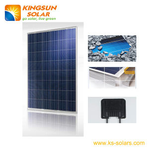 180W Standard Poly-Crystalline Solar Power Panels pictures & photos