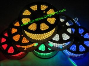 220V RGB SMD 5050 Waterproof Flexible ETL LED Strip Light pictures & photos