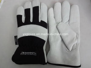 Winter Driver Glove-Leather Glove-Work Glove-Gloves-Industrial Glove-Thisulate Lining Glove pictures & photos