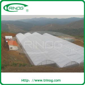 Agricultural Multi-Span Film Greenhouse for market pictures & photos