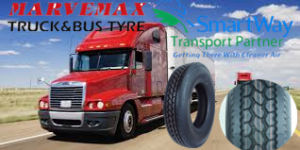 11r22.5 295/75r22.5 Truck Tire pictures & photos