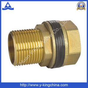 Brass Color Male Hexagonal Nipple (YD-6019) pictures & photos