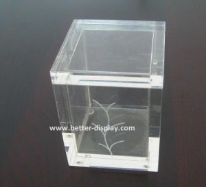 Clear Plastic Acrylic Tea Bags Paper Packaging Box pictures & photos