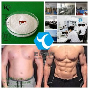 DHEA D-Ehydroisoandrosterone Bulk Steroid Powder for Musle Supplements CAS 53-43-0 pictures & photos