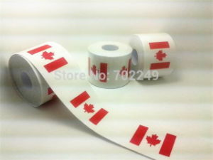Saferlife Therapy Kinesio Tape with Canadian Flag Design pictures & photos