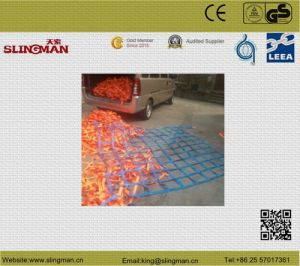 2t*2m Lifting Net (TS)