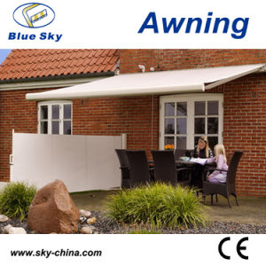 Cheap Outdoor Side Folding Screen Awning pictures & photos