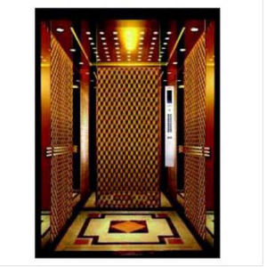 Sum Passenger Elevator with Good Quality pictures & photos