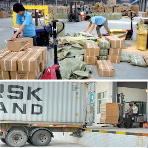 Cargo Consolidation Logistics Service in China Bonded Warehouse pictures & photos