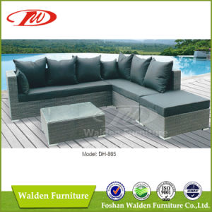 Outdoor Furniture Rattan Furniture Dh-865 pictures & photos