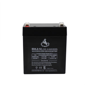 6V 2.8ah Maintenance Free Rechargeable Lead Acid Battery for Alarm pictures & photos
