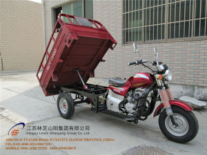 150cc, Three Wheel Motorcycle, China New Style, Cargo Tricycle, Gasoline Trike, Tuk Tuk, (SY150ZH-A6) pictures & photos